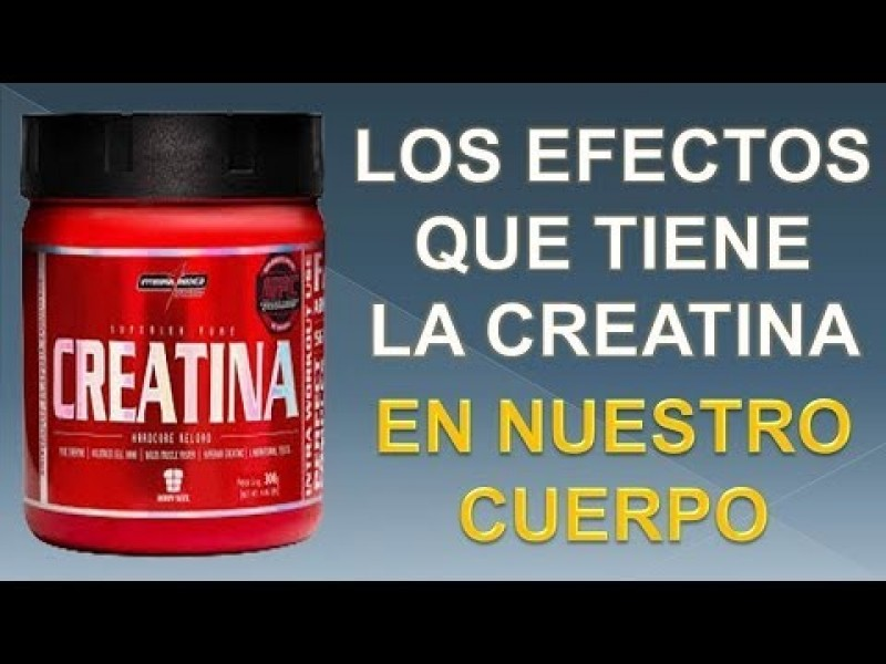 creatina contraindicaciones ✅