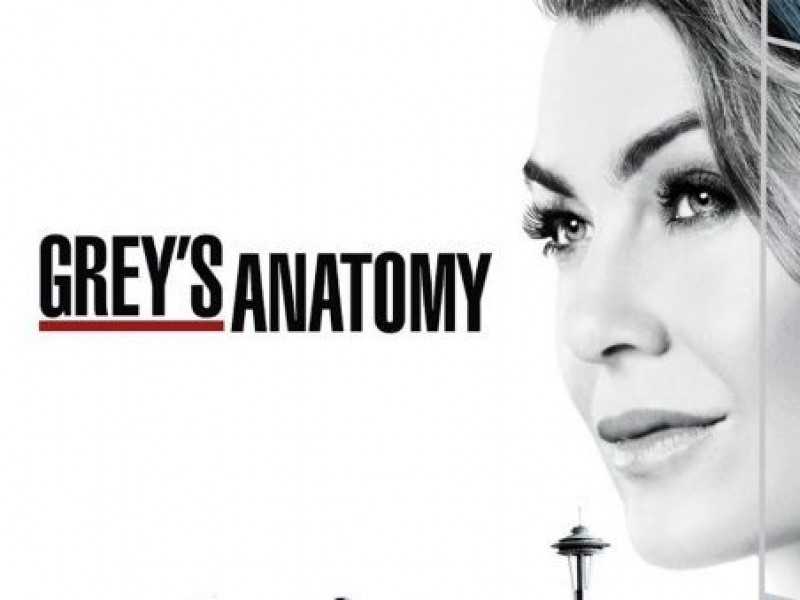 Última temporada de greys anatomy ✅